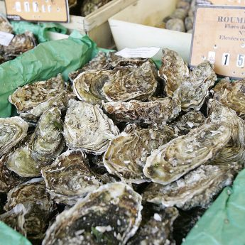 Exclusive holiday houses on the French Rivera - Fish market oysters