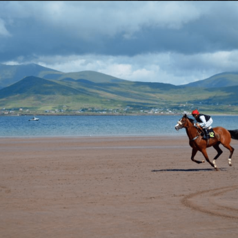 Holiday Letting on the Wild Atlantic Way - Beach horse racing