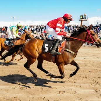 Exclusive holiday rentals Kerry - Festival and horseracing