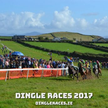 Exclusive holiday cottages Kerry - Dingle horse racing